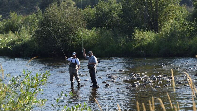 In this Aug. 19, 2015 photo, men are seen fly fishing on the Yampa River near downtown Steamboat Spr