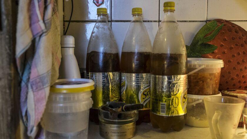 Kombucha bottles made by Boris Korkin in his apartment. February 8th, 2018.