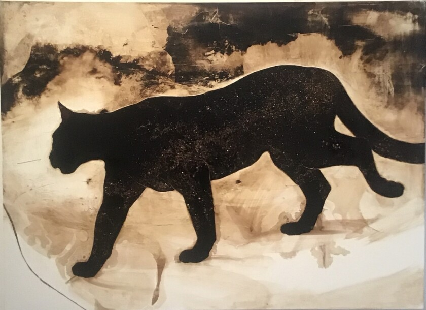 """""""Cougar With Milky Way"""" by James Griffith, 2019. Tar on canvas, 48 inches by 66 inches"""