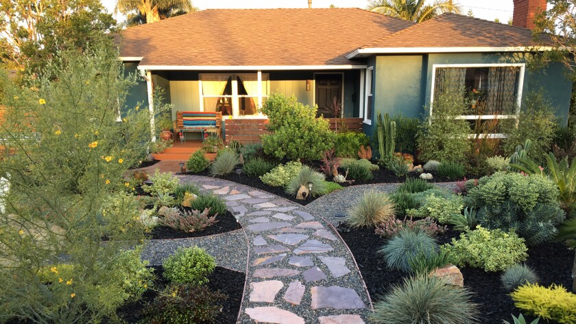 They ripped out their 3,500-square-foot lawn and created a magical 'Rancho Relaxo'