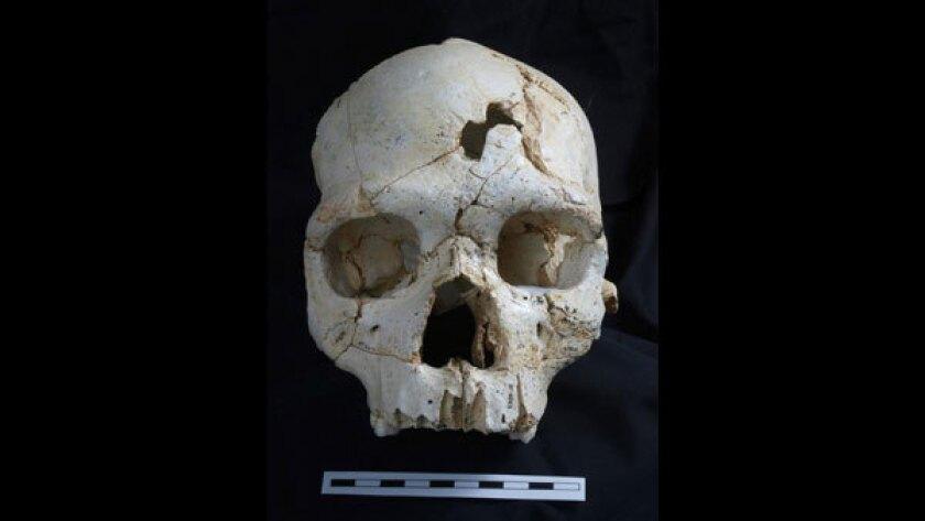 Prehistoric murder