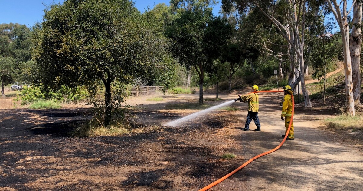 Costa Mesa firefighters quickly extinguish small brush fire at Canyon Park