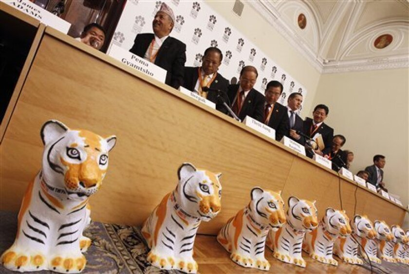 Ministers of Forestry and Natural Resources from tiger range countries leave a news conference at the International Tiger Forum at Mariinsky palace in St.Petersburg, Russia, Sunday, Nov. 21, 2010.  The World Wildlife Fund (WWF) International and many other agencies are gathering in St. Petersburg a