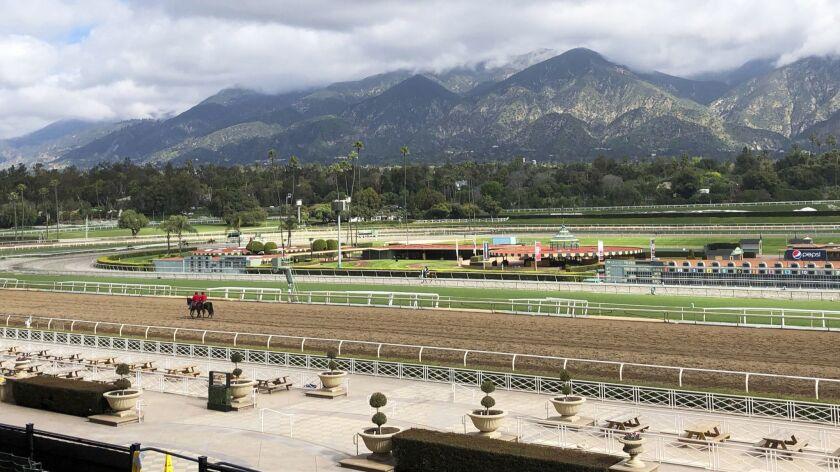Twenty-three horses have died at Santa Anita since the start of their winter/spring meet on Dec. 26.