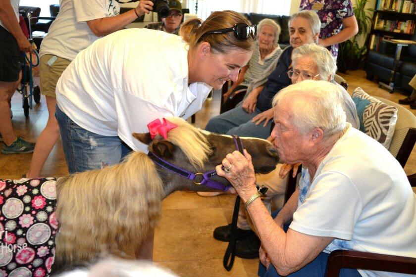 Muriel Kolander meets Tori the mini horse at Ramona Senior Manor.