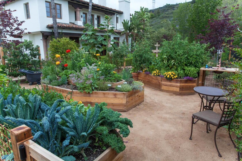 A rain garden in Brentwood