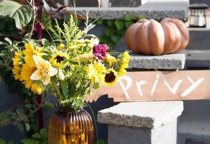 Hansen: Keeping the harvest spirit alive