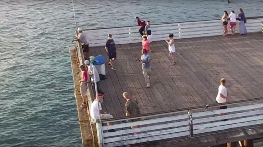 sddsd-drone-fisherman-20160820