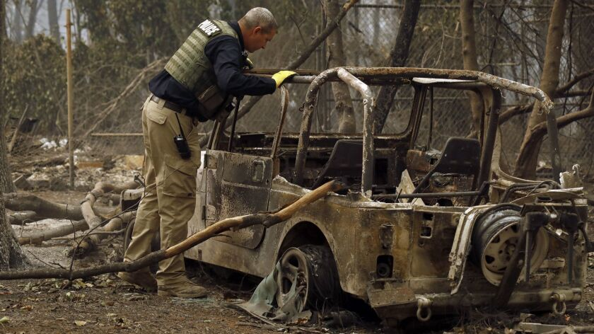 PARADISE, CALIFORNIA--NOV.12, 2018--The search for victims, both human and non-human continues in Pa