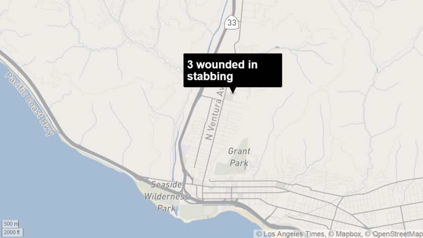 triple stabbing