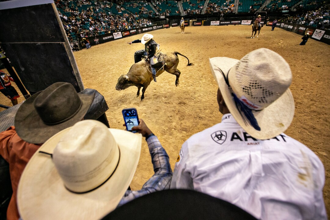 A view over the shoulders of cowboys perched on a bull-riding chute watching a competitor