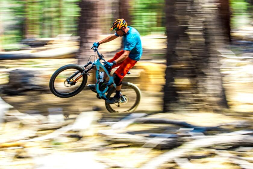 Popping a wheelie on a mountain bike.