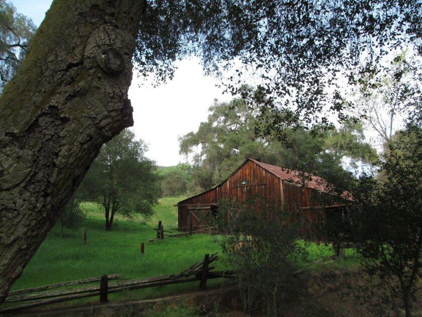 Old barn at Daley Ranch.