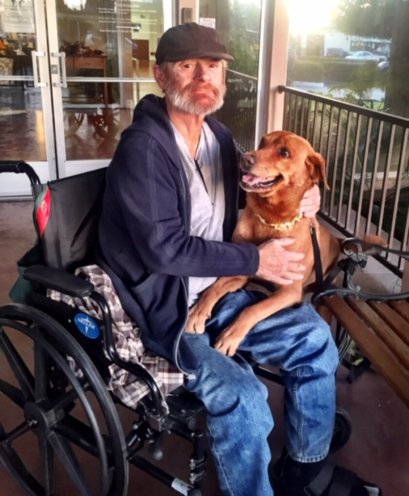 Hobo reunited with Dreamer after four months apart while Hobo dealt with surgery.