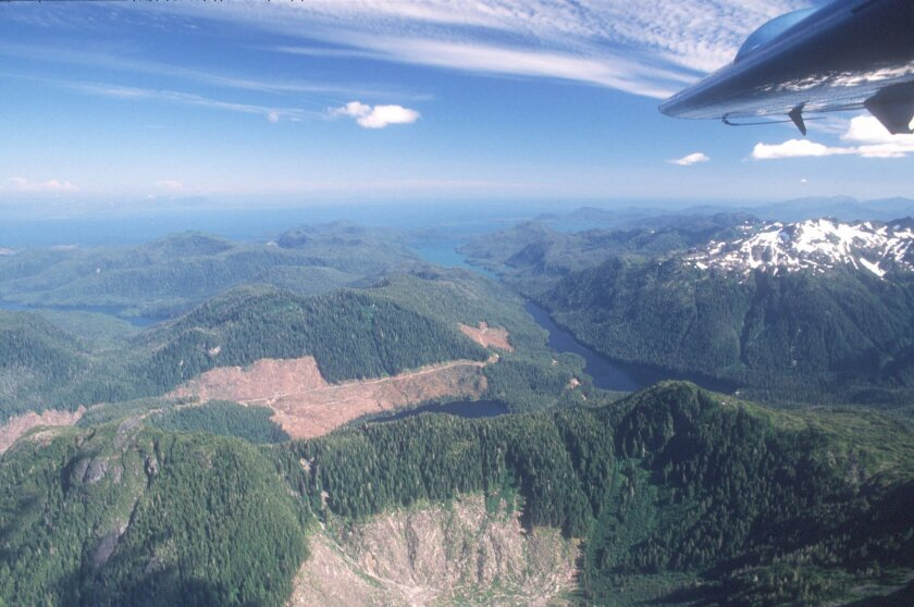 A 1990 photo shows Alaska's Tongass National Forest, where federal roadless protections will prevent logging and road building on about 2 million acres beyond what is already protected.