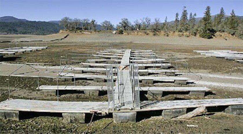 Docks at Lake Pillsbury, north of Santa Rosa, sat high and dry in late January  because of below-average rainfall. (Associated Press file)