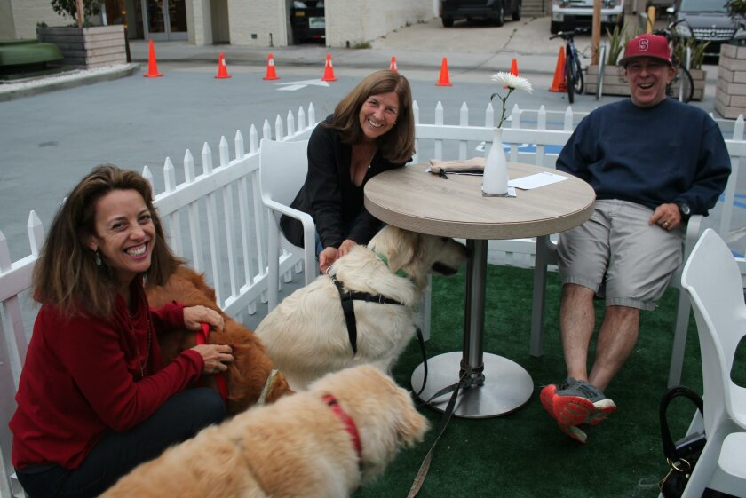 Marjorie Nass with Dewsey, Diane Shwisberg with Bentley and Slater