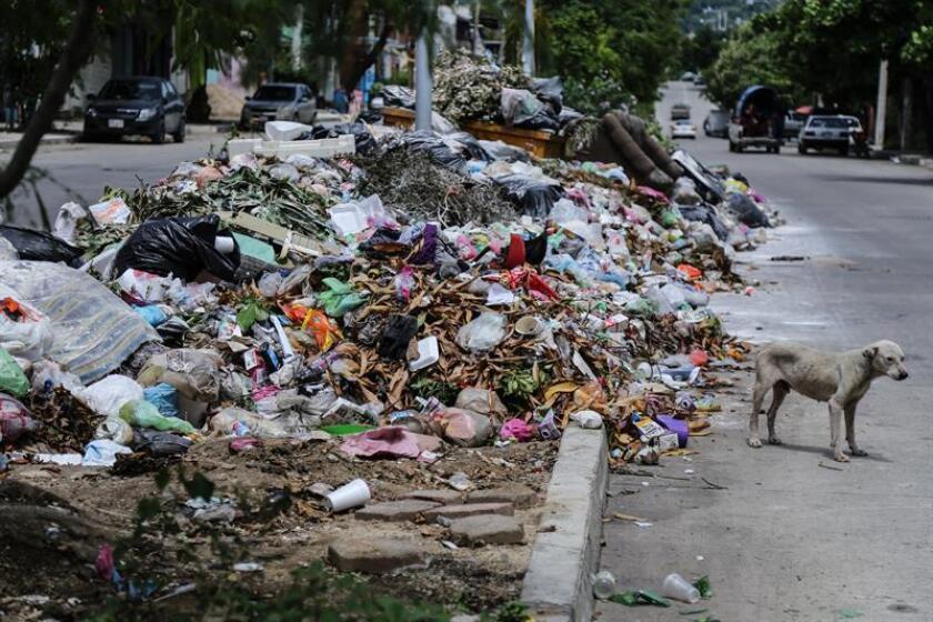 Fotografía de basura regada hoy, jueves 30 de agosto de 2018, en una calle de la zona conurbana en Acapulco, Guerrero (México). EFE