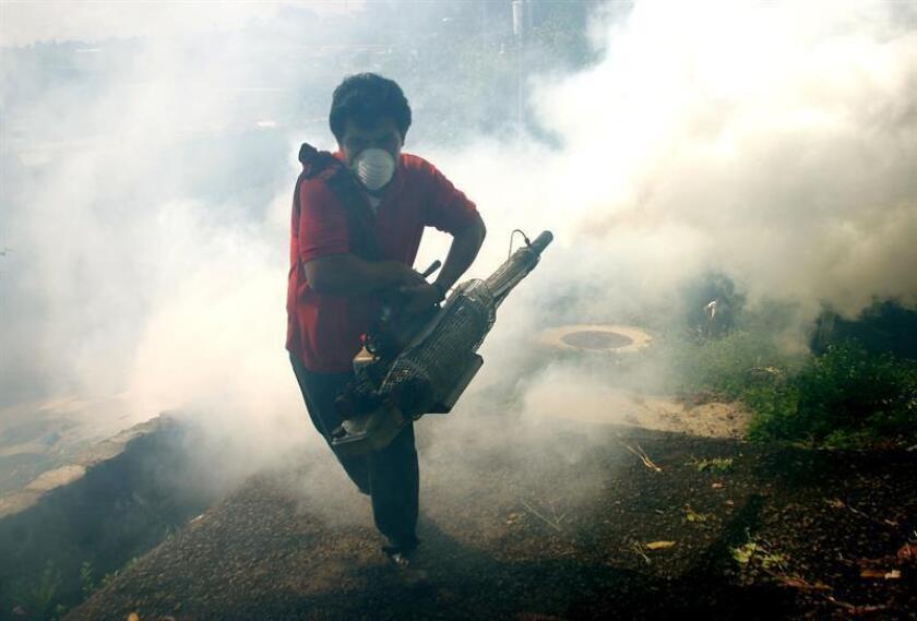 La pulverización de insecticidas en el interior de las áreas identificadas como focos del dengue reduce la futura transmisión del virus en casi un 96 %, según un estudio publicado hoy en la revista científica Science Advances. EFE/ARCHIVO