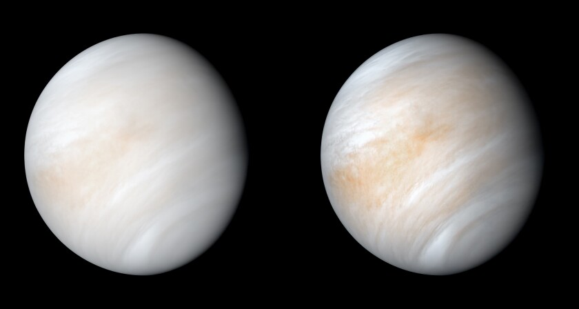 A computer-processed image of Venus, wreathed in clouds, and a contrast-enhanced version that shows more detail.