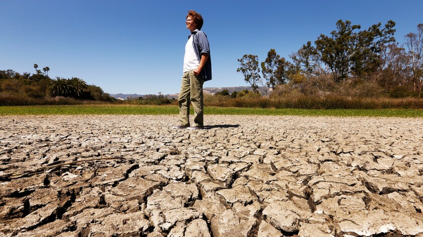 James Wilcox walks through the dry mud flat that is the bottom of Lake Los Carneros in the park of the same name near his home in Goleta.