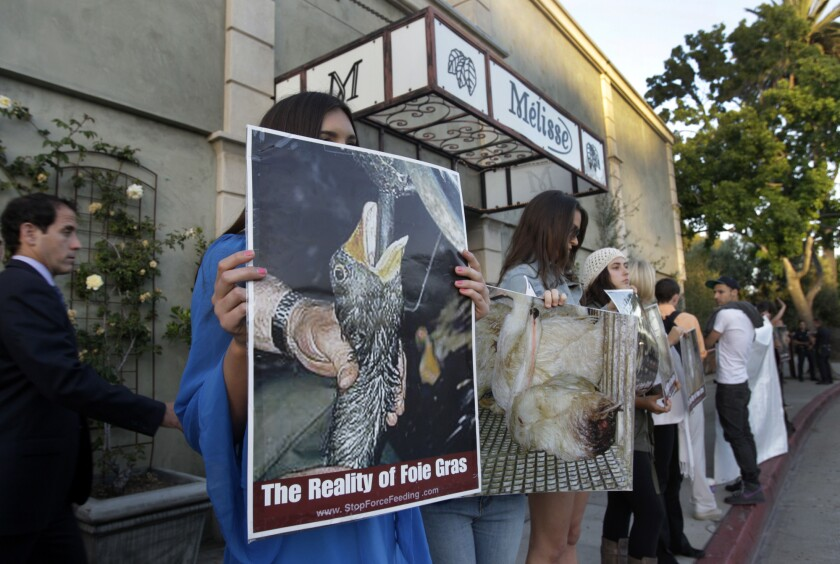 Protesters are seen outside Melisse in 2012 as a six course fois gras dinner is served.
