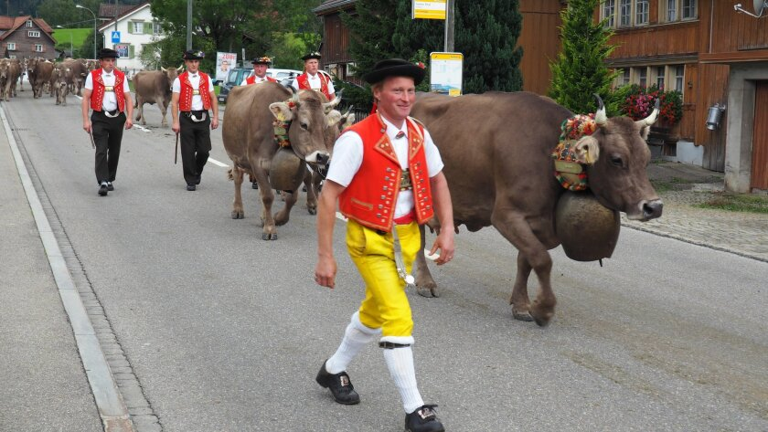 This Sept. 19, 2015 photo shows men in local costume taking part in the Swiss Alpabzug, a celebration of the descent of dairy cows and goats from high Alpine pastures, in Urnaesch, Appenzellerland, in Switzerland. Cows and cowherds who have spent the summer in the mountains are greeted in villages with traditional music and food around Switzerland each autumn. (Christopher Gaffney via AP)