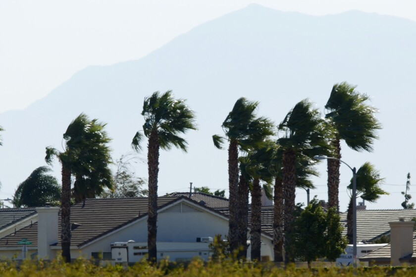 Fronds on palm trees bend from strong winds next to houses in Fontana.