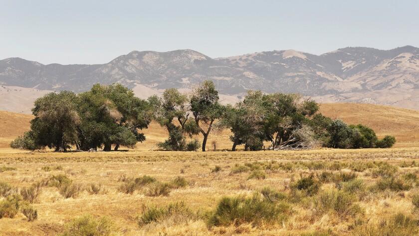 TEJON RANCH, CA - JUNE 06, 2018: Grasslands seen along CA Highway 138 between Interstate 5 and Lanca