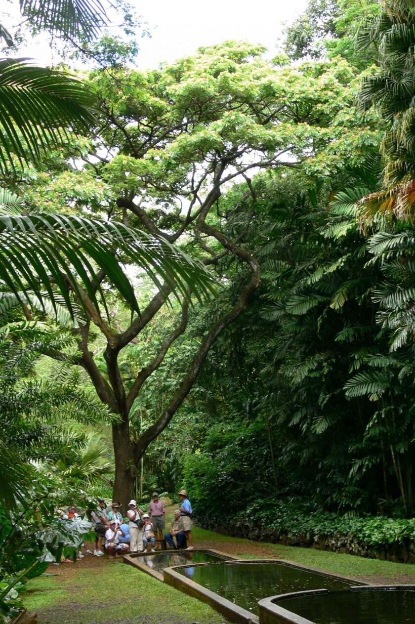 Hawaii Kauai Concert To Celebrate Half A Century Of Gardens Los