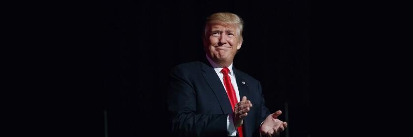 Donald Trump. (AP Photo/ Evan Vucci)