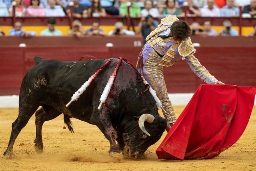 En la imagen, el torero peruano Andrés Roca Rey. EFE/Archivo