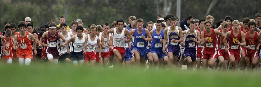 High school sports, including cross country, typically make up 1 to 2 percent of a district's budget.