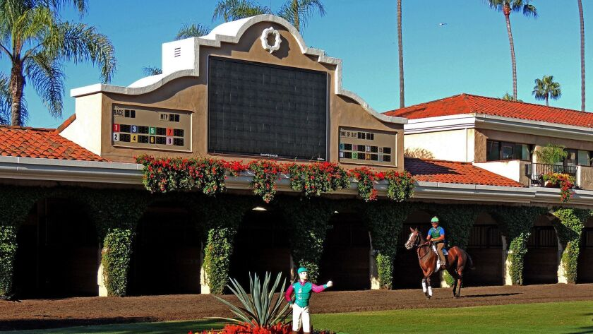 DEL MAR, CALIFORNIA: A horse is exercised during the early morning in the paddock at Del Mar Racetr