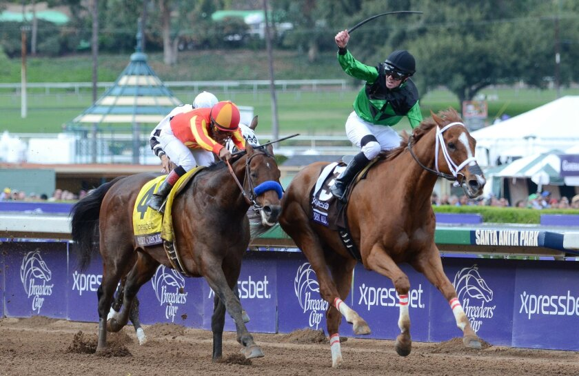 Secret Circle (outside) was denied a repeat win in the $1.5 million Xpressbet Breeders' Cup Sprint by Work All Week.