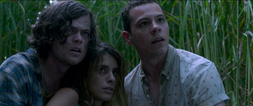 """""""In the Tall Grass"""" stars Harrison Gilbertson, left, Laysla De Oliveira, Avery Whitted"""
