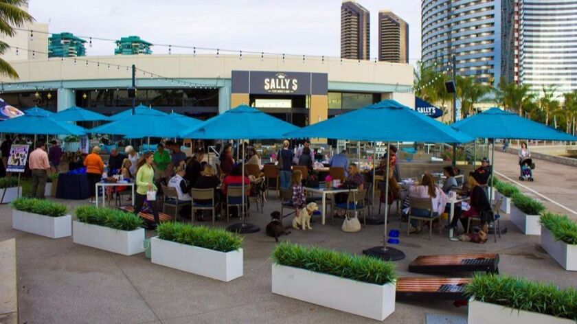 Paws on the Patio: Hyatt Hound's Second Birthday Pawty.