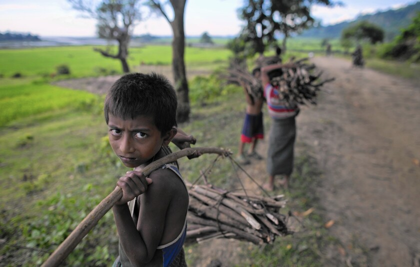 Rohingya children collect sticks to sell as firewood in Myanmar's Rakhine state. The Muslim minority group has become a target of violent attacks by Buddhists and an ethnic cleansing campaign.
