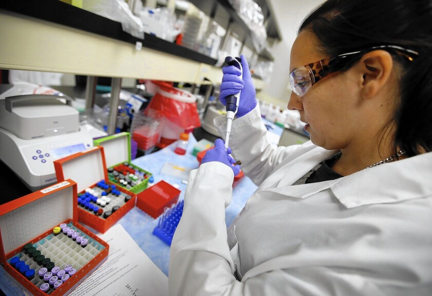 Founded in 2009, Kite Pharma, which has developed a promising treatment for non-Hodgkin's lymphoma, has spent about $100 million on research and development. Above, associate scientist Stephanie Wiltzius sets up samples.