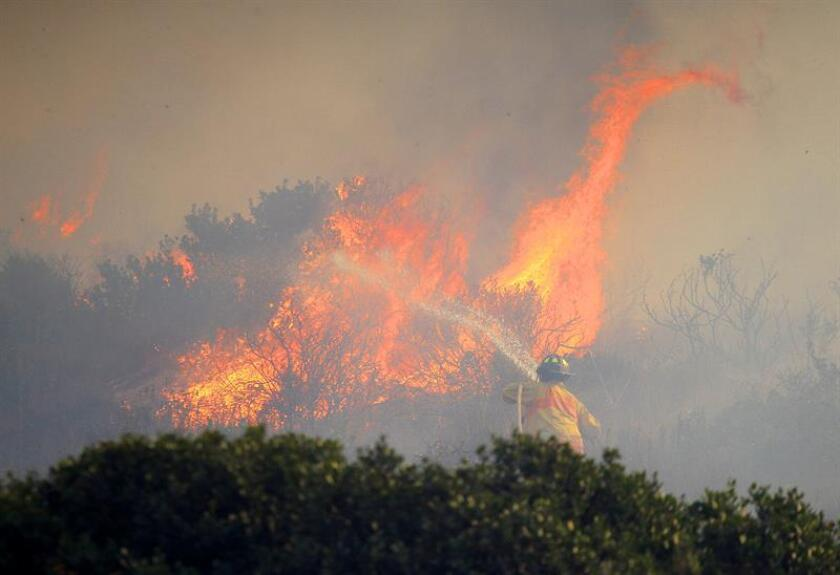 Bomberos intentan sofocar un gran incendio forestal en la ciudad de Ensenada, en el estado de Baja California Sur (México). EFE/Archivo