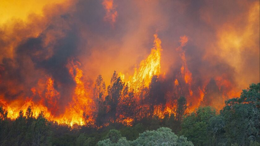 Nothing Trump would understand: Flames erupt from the River fire in Lake County, Calif., on Thursday.