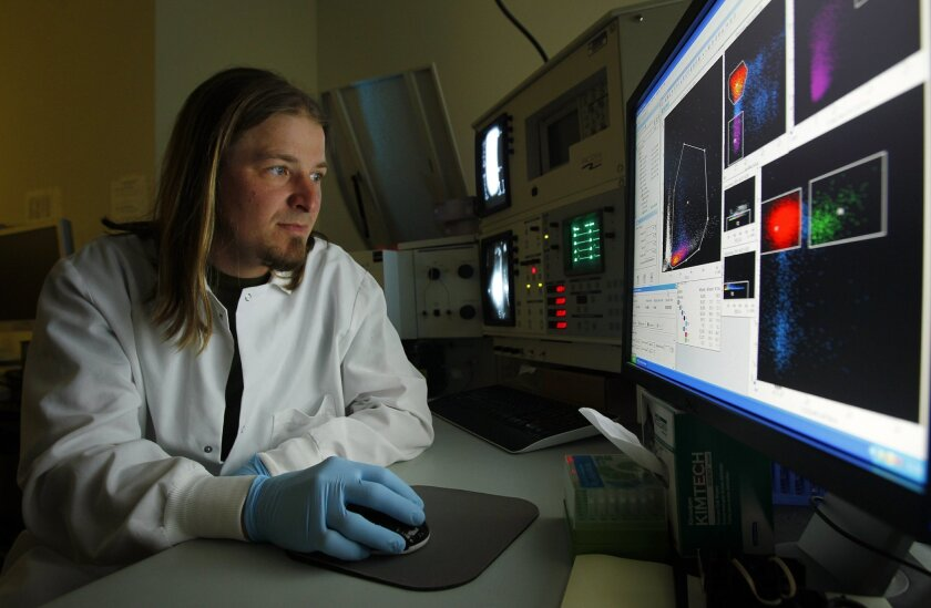 Aaron Tyznik, Ph. D. sorts cells using flow cytometry at the La Jolla Institute of Allergy and Immunology. The Institute ranked among the nation's best places to work for postdocs.
