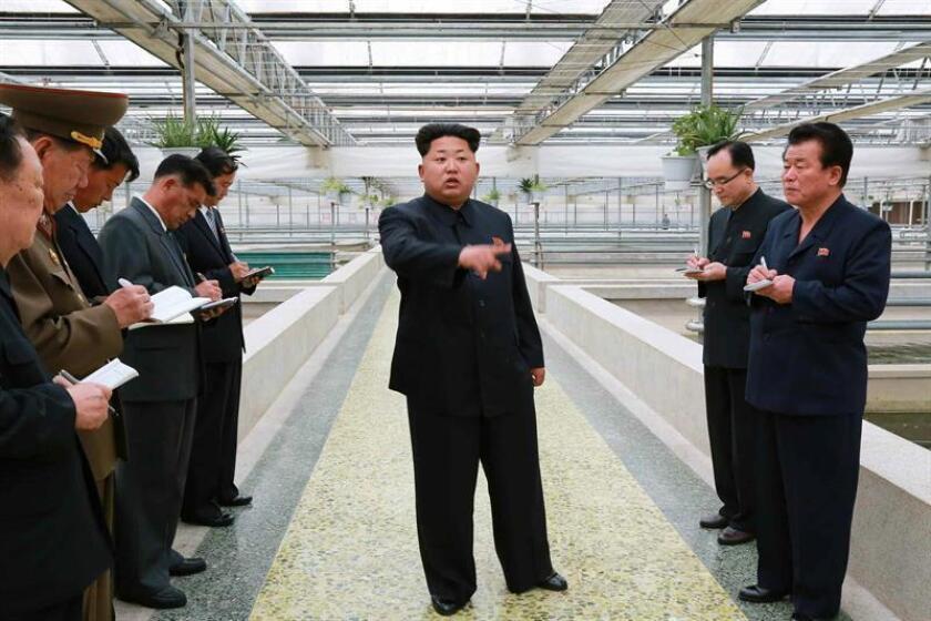 """El presidente, Donald Trump, pronosticó hoy que las conversaciones con el líder norcoreano Kim Jong-un serán """"un tremendo éxito"""", a la vez que alabó la colaboración de China y criticó la inacción de sus predecesores al asegurar que """"no hicieron nada"""". EFE/ARCHIVO/PROHIBIDO SU USO EN COREA DEL SUR"""