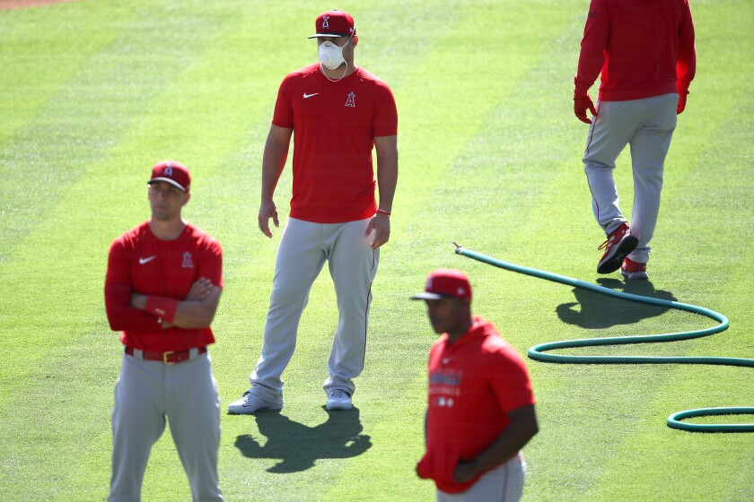 Angles star Mike Trout, in mask, looks on during the team's summer workouts at Angel Stadium of Anaheim.