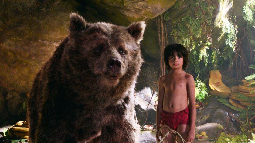 Bear necesities