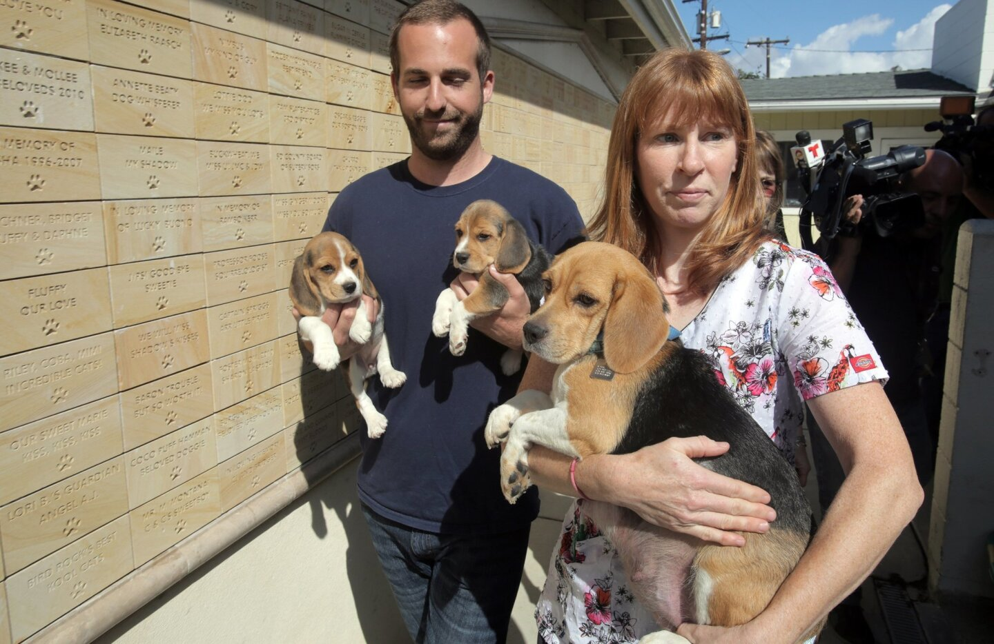 Veternarian Dr. Julie Moews, right, and Rancho Coastal Humane Society staff member Justin Pool carry beagles that arrived at the society to their kennels. Photo by Bill Wechter