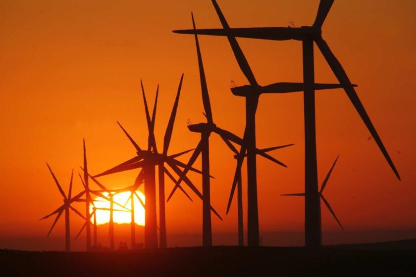 Sunrise at EDF Renewables' field of nearly 300-foot-tall wind turbines near Rio Vista, Calif., in 2012.
