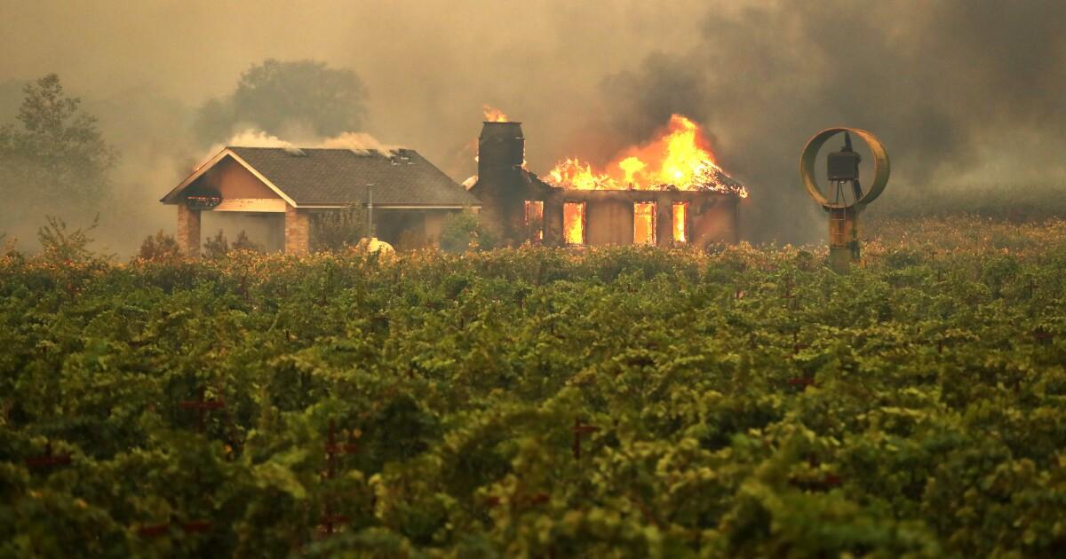 Feuerwehrmann, zwei Zivilisten verletzt, während der Flucht aus den Flammen in Kincade Feuer