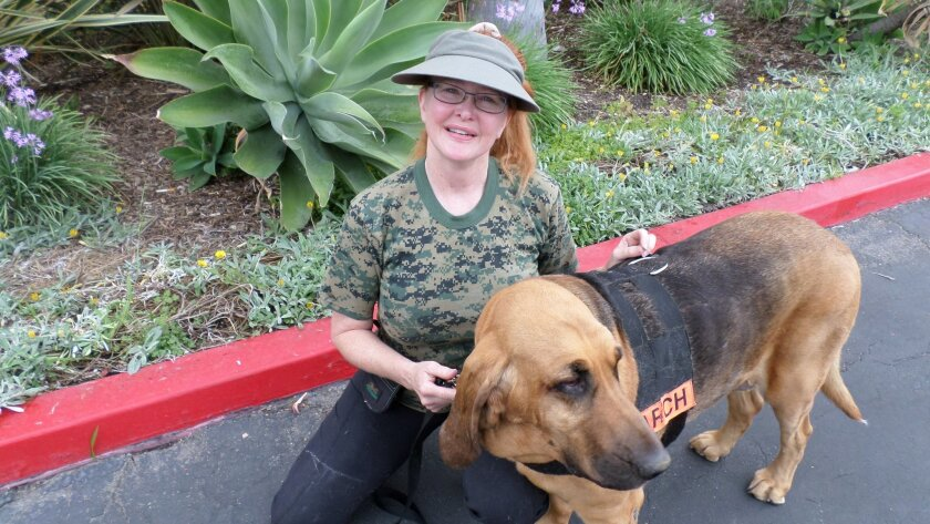 Lost pet sleuth Landa Coldiron and her bloodhound, Glory, were employed to help narrow the search for Jane Malkin's cat. Glory was a semifinalist in this year's Hero Dog Awards, an event for dogs who do extraordinary things that is televised on the Hallmark Channel.