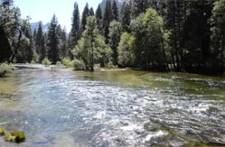A Minute Away: Spring in Yosemite
